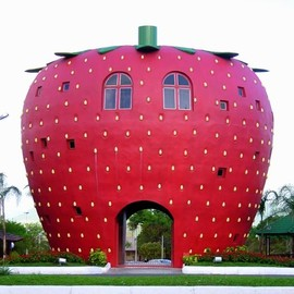 Bom Principio, Brazil - Strawberry gate♡