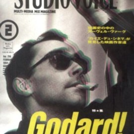 STUDIO VOICE Vol.246 1996年6月号〈特集 COOL FICTION〉
