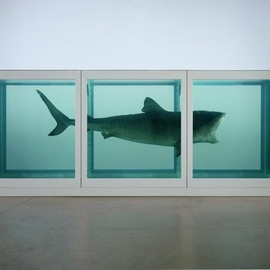 Damien Hirst - The Physical Impossibility of Death in the Mind of Someone Living