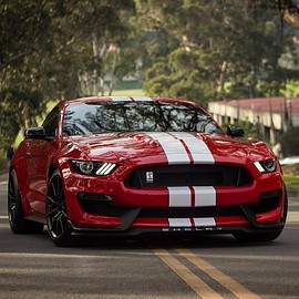 Ford - Mustang | Shelby GT350