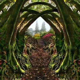 Redwood Regional Park,Oakland, California USA - Garden Entrance…