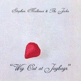 Stephen malkmus - Wig Out at Jagbags [Analog]