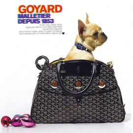 Goyard  - French Bulldog Dog Tote