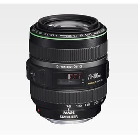 Canon - EF70-300mm F4.5-5.6 DO IS USM