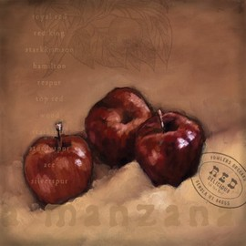 InGallery.com - Apple 1 by Eric Gillett Fine Art Canvas 12 x 12 in Gallery Wrap Wall Decor