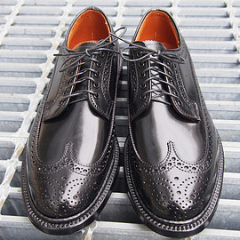 ALDEN - CORDVAN LONG WINGTIP (ALDEN × District)