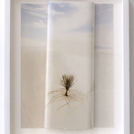 Letha Wilson - Vertical Horizon Sands, mixed media