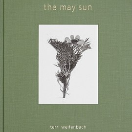 Terri Weifenbach - The May Sun