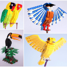 LEGO CUUSOO - Bird Project