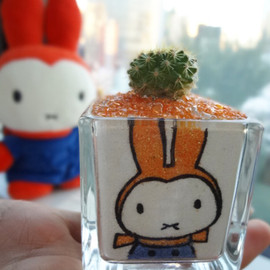 miffy - miffy style サボテン
