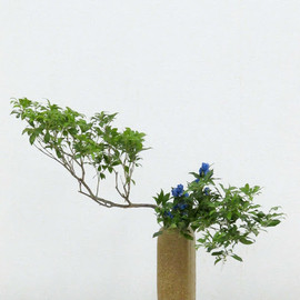Shinme Ikebana - アセビとリンドウ: Pieris japonica and Japanese gentian