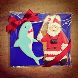 Thumb and Cakes - dolphin and Santa cookie