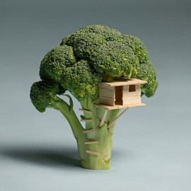 Above:Broccoli Tree House