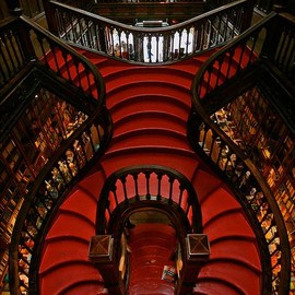 The magnificent staircase at the Lello & Irmão bookstore in Porto...