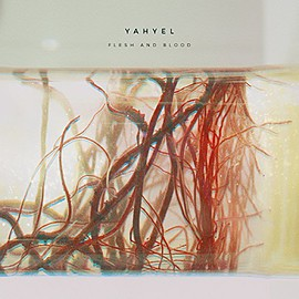 yahyel - Flesh and Blood [アナログ盤1LP / DLカード付 / 国内盤] (BRLP530)