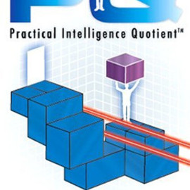 Sony Computer Entertainment - PQ - Practical Intelligence Quotient PQ: 実用的知能指数 Playstation Portable