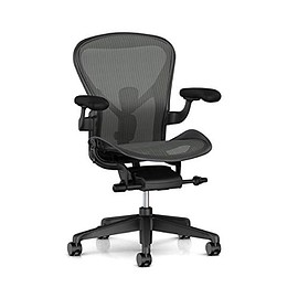 Herman Miller - AERON CHAIR REMASTERED B size Graphite frame Graphite base BB caster