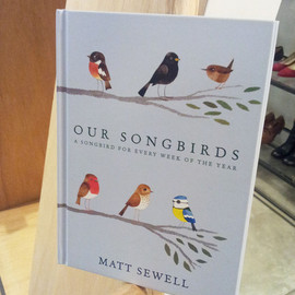 Matt Sewell - OUR SONG BIRDS