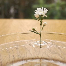 RIPPLE - Floating Vase