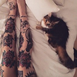 Kitty Cat Legs Roses Tattoo Ink Lovely Girly Bodyart Inkedgirls