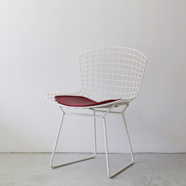 Knoll - Side Chair by Harry Bertoia