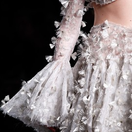 Alexander McQueen - Fall 2012 Collection