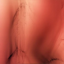 Wolfgang Tillmans - Peaches(VIII )