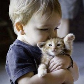 #Kissing #Kitty #LittleBoy