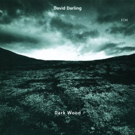 David Darling - Darkwood