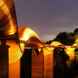 Singapore - Henderson Waves Bridge