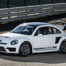 Volkswagen - The Beetle GRC