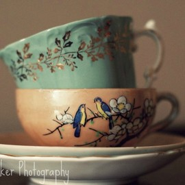 Luulla - Tea Cups - 8x10 fine art photograph
