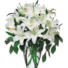 White Lilies (for Arow)