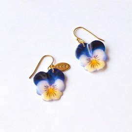 OVCE - pansy_mini blue×white