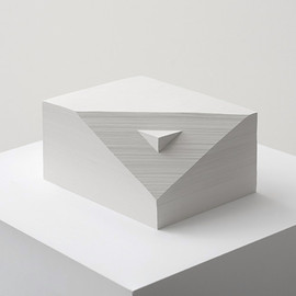 Bianca Chang - Form in white (Double prism), 2012