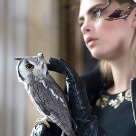 Mulberry - Cara And The Owls 2013AW Campaign