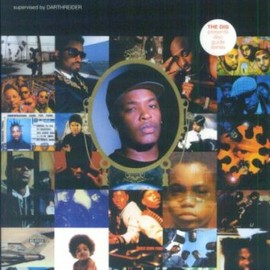 ダースレイダー - Dics Guide Series HIP HOP (THE DIG PRESENTS DISC GUIDE SERIES)
