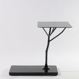 Galerie Kreo - Frozen square hogweed table by Wieki Somers