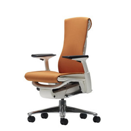 Bill Stumpf & Jeff Weber for Herman Miller - Embody Chair