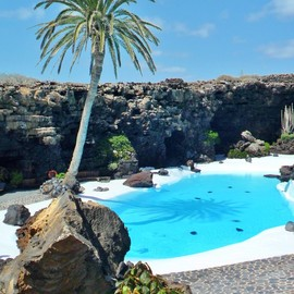 Palm tree and pool in Volcanic Crater, Jameos Del Agua