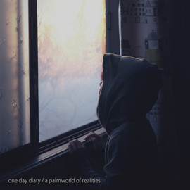 one day diary - a palmworld of realities