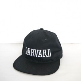 VOTE MAKE NEW CLOTHES - HARVARD CAP