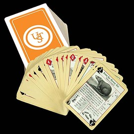Ultimate SurvivalTechologies - Survival Tips Playing Cards