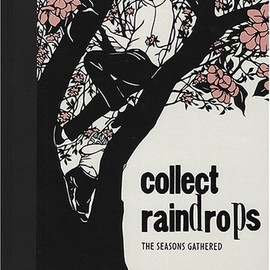 Nikki McClure - Collect Raindrops: The Seasons Gathered