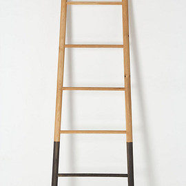 Anthropologie - Submergent Ladder