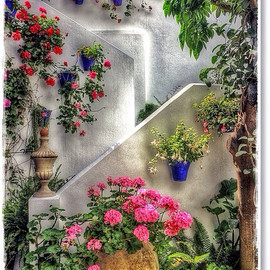 Cordoba, Spain - Patio