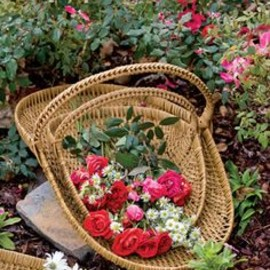 cottage style garden....with baskets of roses and dasies