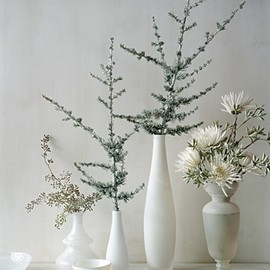 Simple wintry table decor
