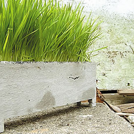 PULL+PUSH PRODUCTS. - HEI PLANTER