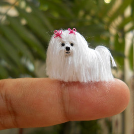 suami - Maltese - Tiny Crochet Miniature Dog